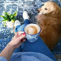 Minäkö keski-ikäinen?: Rakkaimmat mukit ja mahtava Cellbes 100e lahjakort... Corgi, Coffee, Lifestyle, Drinks, Animals, Coffee Cafe, Animales, Corgis, Beverages