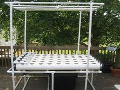 A Homemade Hydroponic System.