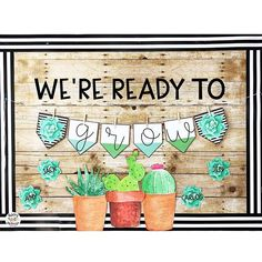 Welcome your students with a fun succulent and cactus themed bulletin board! It matches the decor pack already posted in my store. Classroom Birthday, Toddler Classroom, First Grade Classroom, Kindergarten Classroom, Future Classroom, Spanish Classroom, Classroom Decor Themes, Classroom Bulletin Boards, Classroom Design