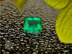 Emerald Over 2 Carats May Birthstone Loose Gemstone for Engagement or Wedding Anniversary Ring