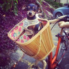 Isabela resolveu aproveitar essa sexta-feira de sol maravilhosa e saiu pra dar uma voltinha de bike!
