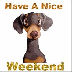 have a good weekend - Bing Bilder Weekend Gif, Happy Weekend Quotes, Weekend Images, Good Day Quotes, Have A Good Weekend, Its Friday Quotes, Weekend Humor, Hello Weekend, Morning Quotes
