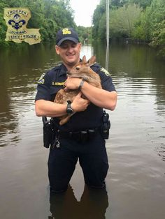 Man, woman, child, or wildlife friend, Troopers are here to help during these challenging times.  This young fawn found itself in need while trapped in a flooded apartment complex near Burbank Drive in Baton Rouge. Trooper David Hernandez came to the rescue and was able to bring it to the safety of the LSU School of Veterinary Medicine.  #louisianastrong  #TroopersCare #laflood