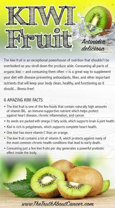 Do you know just how many health benefits you can reap from the flesh, fiber, skin & seeds of kiwifruit? It's a fibrous food rich in gut-balancing prebiotics! In this article, Ty Bollinger explains the health benefits of kiwi fruit such as: rich in vitami Natural Health Remedies, Natural Cures, Holistic Remedies, Herbal Remedies, Nutrition Education, Health And Nutrition, Health Tips, Nutrition Tips, Gastronomia