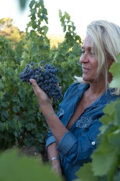 @ValerieRousselle #vin #Var #Lorgues #Wine #vigne #raisin #vendanges