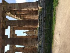 Pasteum Italy .2013