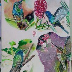 Hummingbirds Colibris Watercolor