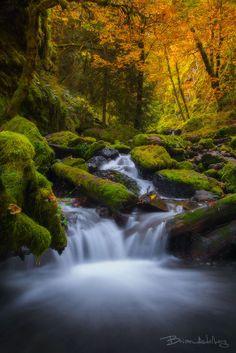 Columbia River Gorge, Oregon; photo by .Brian Adelberg