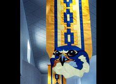 School spirit banner - hawk.