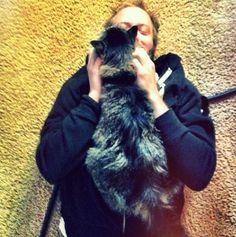 justin vernon and kitty