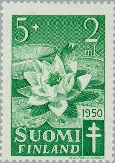 Stamp: European White Waterlily (Nymphaea alba) (Finland) (Fight against TBC) Mi:FI 392