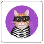 Cat Burglar 1
