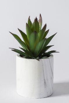 Aloe In Marble Pot, Green | BHS