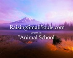 I hope EVERYONE who sees this pin with watch. It's short, don't worry, and totally amazing. Animal School @ Raising Small Souls