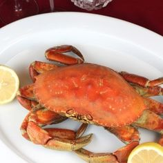 Dungeness crab cooked in beer. ~ Cooked just for you, sweetie. Merry New Years & Happy Christmas! Crab Dishes, Seafood Dishes, Crab And Lobster, Fish And Seafood, Best Seafood Recipes, Fish Recipes, Dungeness Crab Recipes, Star Food