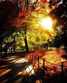 Autumn Delights ~ Instagram