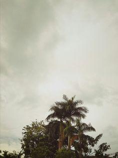 Siring, Banjarmasin, South Borneo. INDONESIA