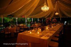 Flowerwild Designs & Kristen Banta Events