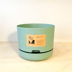 Mr Kitly Self Watering Planter - 250mm Teal