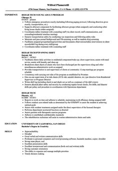 Controller Resume Objective Samples