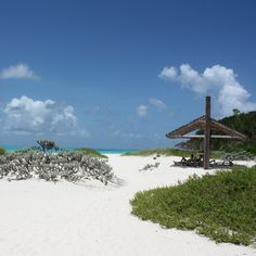 Jamaica S Best All Inclusive Family Resort Ocho Rios