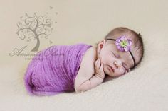 Purple Cheesecloth