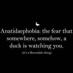 Hahahahahahahahaha never trust a duck