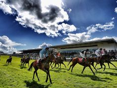 Punchestown Festival 2016 Guide