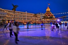 Christmas Trips, Christmas Travel, Holiday Lights, Big Island, Lake Tahoe, Key West, The Good Place, Attraction, San Diego