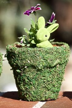 Spring Decor Moss Covered Pots! Easy to make & perfect for Home Decor, Party Centerpieces or any time!