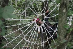 Building ropes course is lots of fun! Asheville's Adam Laufer, owner of World Treehouses, clowns around with a human-sized spiderweb. Photo credit: Nick Earley