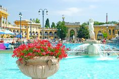 Budapest: hot springs mineral pool in the City Park near Széchenyi palace. It was so much fun!!