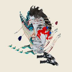 "Animal Collective: ""Lying In The Grass"" 
