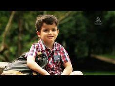 Vídeos de menino contando histórias bíblicas emociona