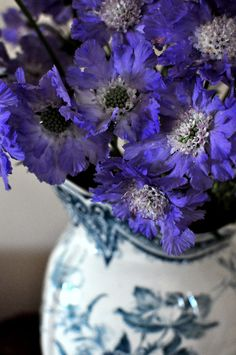"""Cornflower Blues #floral #event #flowers"""