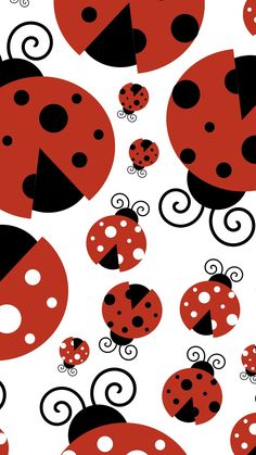 wallpaper iphone 6 - Google Search Iphone 6 Plus Wallpaper, More Wallpaper, Cellphone Wallpaper, Wallpaper Backgrounds, Wallpaper Ladybug, Scrapbook Paper, Scrapbooking, Baby Ladybug, Pattern Pictures