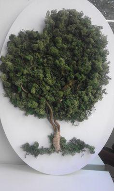 Moss Garden, Veg Garden, Indoor Garden, Nature Crafts, Decor Crafts, Fun Crafts, Moss Wall Art, Moss Art, Shiva Tattoo Design