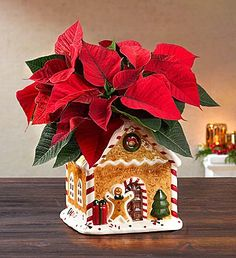 Shop Christmas flowers & gifts for delivery to celebrate the season! Find beautiful Christmas floral arrangements and holiday flowers. Christmas Poinsettia, Christmas Flowers, Christmas Gingerbread, Christmas Themes, White Christmas, Christmas Decorations, Xmas, Happy Hour Party, Food Gift Baskets