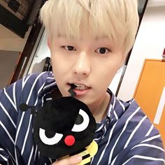 """■Block B JAPAN OFFICIAL■ 僕Block B公式キャラクター""""Bee""""が Block Bの最新情報を届けるんだBee〜✨ Block B 2016 LIVE…"""