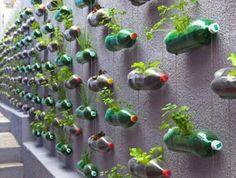 verticale tuin in petflessen