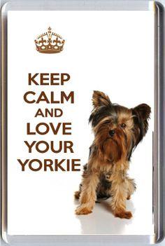 I like yorkies