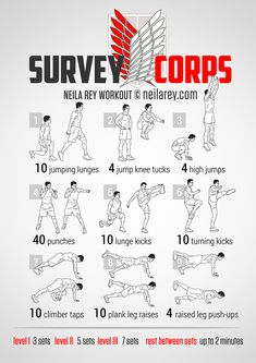 Survey Corps Workout
