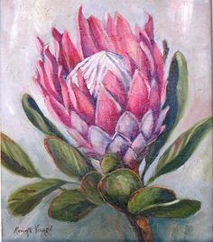 Protea by R. Visage Protea Art, Protea Flower, Art Floral, Fabric Painting, Painting & Drawing, Bull Painting, Watercolor Flowers, Watercolor Art, Painting Flowers