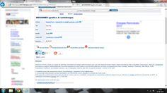 Anúncio online publicado pela WebOffice.  Fonte: http://www.net-empregos.com/1806153/oferta-emprego/#anuncio.