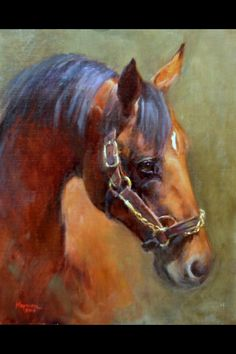 Would love to give credit where credit is due! Beautiful Horses, Animals Beautiful, Horse Oil Painting, Horse Artwork, Horse Portrait, Horse Drawings, Equine Art, Wildlife Art, Western Art