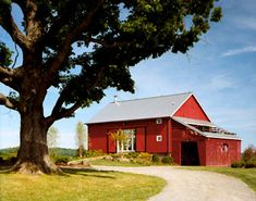 A bank barn is a specific style of barn that is built into the side of a hill or a bank, which allows access to both of its floors from the ground.