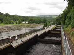 The fish ladder in Pitlochry, showing several of the intermediate pools which the salmon use for travelling upstream. The River Tummel can be seen flowing next to it. Pitlochry Scotland, Hillside Landscaping, Salmon Fishing, London Travel, Bed And Breakfast, Kayaking, Travel Photos, Ladder, Beautiful Places