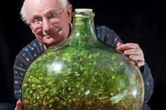 """Ta """"biosfera"""" – zamknięty ekosystem, w którymroślinywbutliradzą sobie bez dostępu wody czy powietrza z zewnątrz – istnieje od 43 lat (aktualizacja z 2015 r.). Jedyne, czego p…"""