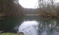 """Wycieczka do Rezerwatu """"Źródła rzeki Łyny"""" :http://www.tymawa.pl/wycieczka-do-rezerwatu-zrodla-rzeki-lyny/"""