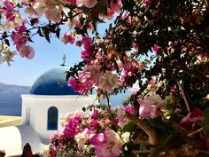 Travel is one of the most enriching experiences that someone can have in their lives. Opening to new cultures: The flavors of Greece. A gastronomic odyssey.